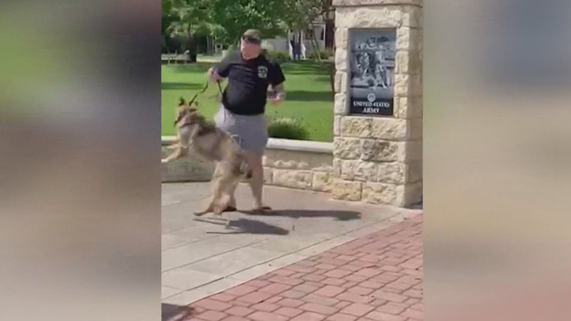 US Army canine handler from Boerne reunites with military dog