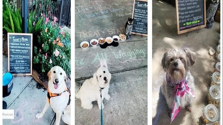 Houston woman bakes treats, sets up daily 'bone buffet' for neighborhood dogs