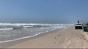 Officials confirm missing swimmer found dead near Mustang Island