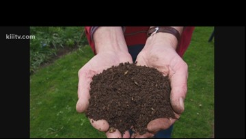 When to use compost tea