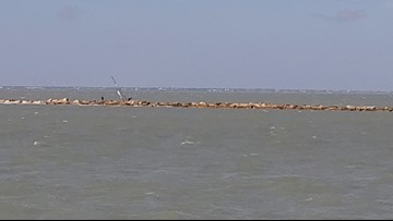 Sailboat crashes into jetty in Corpus Christi Bay