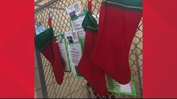 Corpus Christi Animal Care Services needs help filling Christmas stockings for animals