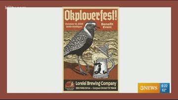 STX Birding - Okploverfest