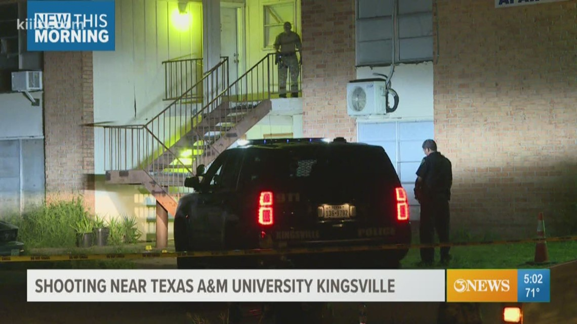 kingsville police investigate shooting at utopian