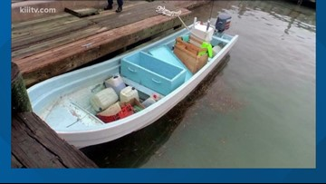 U.S. Coast Guard investigate illegal fishing, sharks and fish confiscated