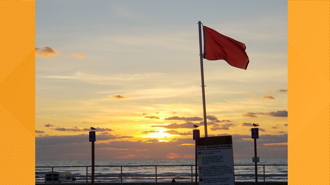 Red flags warn beach-goers of severe hazards in the water