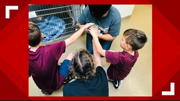 Big Brothers, Big Sisters spend time with shelter pets