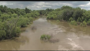Congressman Gonzalez announces secretarial natural disaster designation