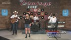 Domingo Live: Kumbia VI, Los Tremendos Alacranes