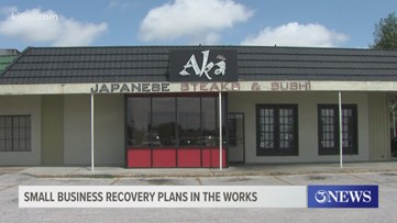 Small business recovery plans for South Texas
