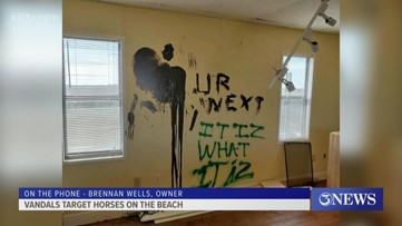 Vandals target 'Horse on the Beach'