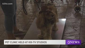 Pet clinic held at Kiii-TV studios
