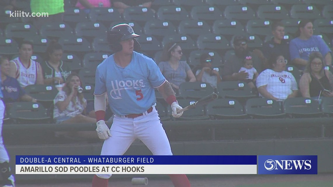 Lee, Brown power Hooks to shutout win over Sod Poodles - 3Sports
