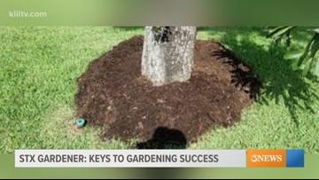 STX Gardener - Success in the heat
