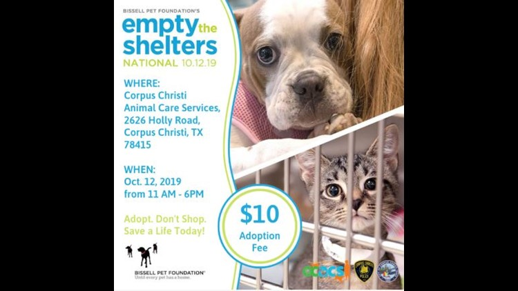 Animal Control Empty the Shelter