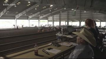 Buc Days Rodeo Corpus Christi slack competitions begin