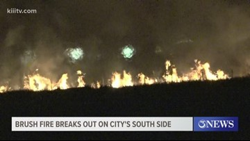 Brush fire breaks out on South Side