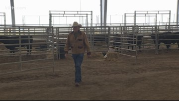 Someone to Know: Livestock Show Volunteer Harvey Buehring