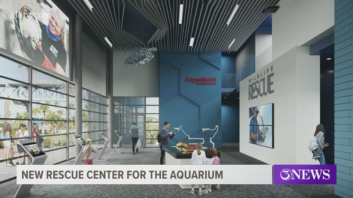 Texas State Aquarium building new rescue facility for injured animals