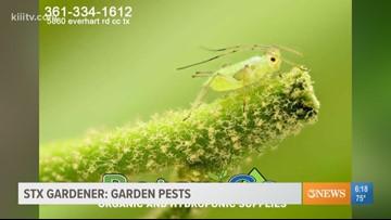 STX Gardener - keeping pests away
