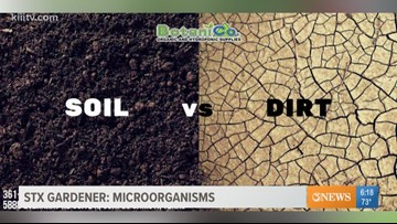 STX Gardener; how to use microbe additives