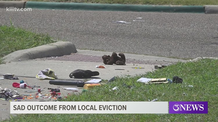 Eviction results in displacement of several cats, one dog dead