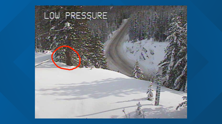 Sasquatch isn't first bizarre thing to appear on Sherman Pass camera