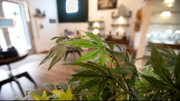 CBD products are everywhere in Texas since the state legalized hemp. Experts warn: buyer beware.